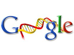Google DNA